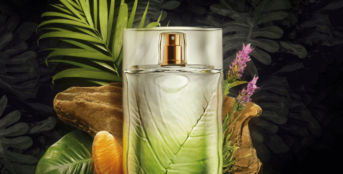 perfume arbo reserva novo