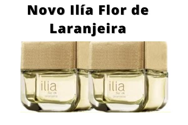 Novo Ilía Flor de Laranjeira-conheça-